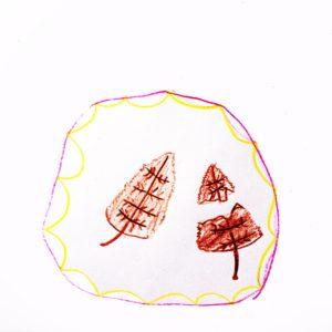 まほうの ざいりょう:カカララカッ葉(家のちかくの 木の まわりで みつけた、カラカラした かれ葉。)